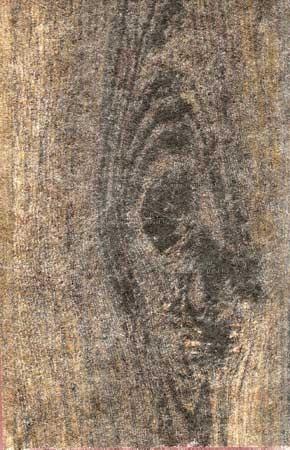 Dekor fátyol sötétbarna famintás (WG 003 BL)